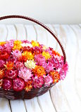 wicker basket with multicolored flowers