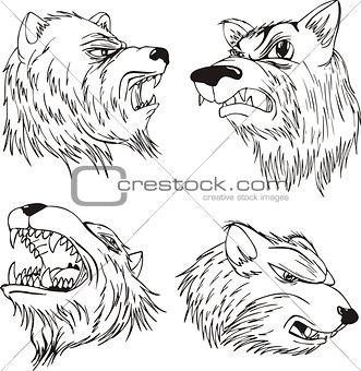 Aggressive bear heads