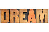 dream word in wood type