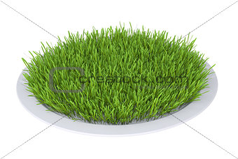 Green grass on a plate