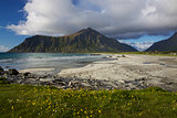 Beach on Lofoten