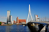Rotterdam by the Bridge