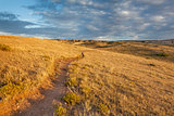 trail through Colorado prairie