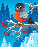 Winter bird theme image 1