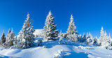 Morning winter mountain landscape (Carpathian, Ukraine).