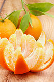 Tangerine with Segments