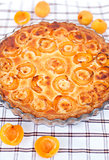 Apricot tart on the checkered tablecloth