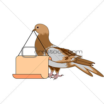 A pigeon holding a big blank paper in his beak