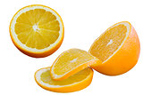 Sliced Orange Fruits Isolated