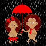 A couple of funny cartoon hedgehogs under red umbrella in the ra