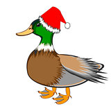 A Christmas duck isolated on a white background