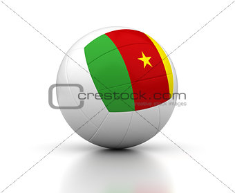 Cameroon Volleyball Team