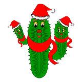 Funny Christmas cactus