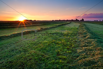clipped hay on grassland at sunrise