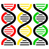DNA Symbols . Vector illustration.