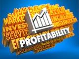 Profitability. Wordcloud Concept.