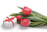 composition with tulips and gift box