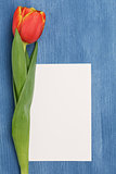 tulip with blank paper note