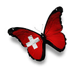 Swiss flag butterfly, isolated on white