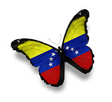 Venezuelan flag butterfly, isolated on white