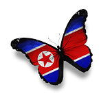 Korean flag butterfly, isolated on white