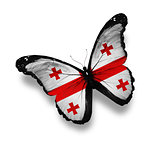 Georgian flag butterfly, isolated on white
