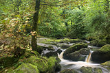 Landscape of Becky Falls waterfall in Dartmoor National Park Eng