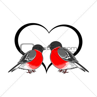A couple of cute bullfinches (pyrrhula) with a heart