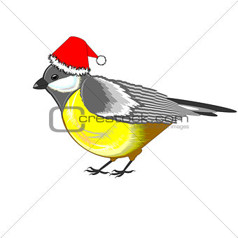 A cute Christmas titmouse isolated on a white background