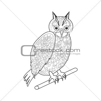 A monochrome sketch of an owl