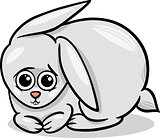 baby rabbit bunny cartoon illustration