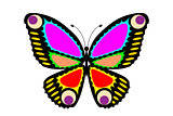 Easy editable vector butterfly