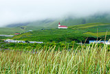 Fog over the village, Iceland, summer