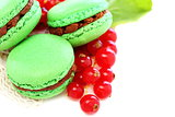 Macarons stuffed with chocolate and mint.