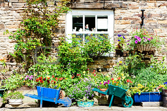 house with plants in Blanchland, Northumberland, England