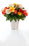 Bunch of roses on the white background