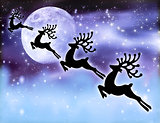 Reindeer silhouette in night sky