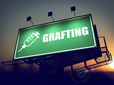 Grafting - Billboard on the Sunrise Background.
