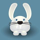 Cute baby rabbit