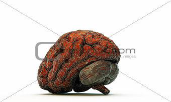 brain in cage