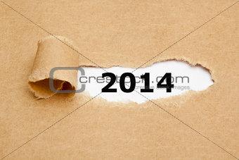 Torn Paper 2014