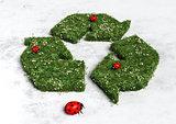 Ladybugs on recycling symbol