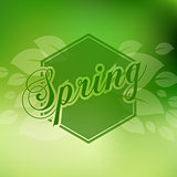 Stylish Spring seasonal card design with bokeh effect.