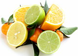 different types of citrus fruits (orange, lime, lemon, tangerine)