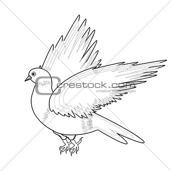 A monochrome sketch of a bird