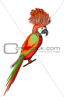 A parrot macaw isolated on a white background