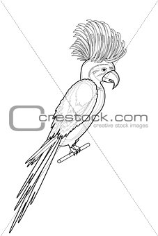 A monochrome sketch of macaw parrot isolated on a white backgrou