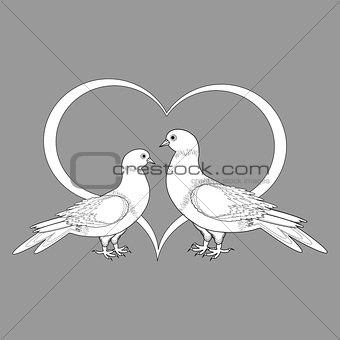 A monochrome sketch of two doves and a heart