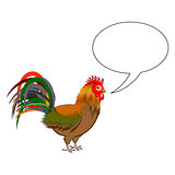 A rooster with a talking bubble