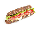 Fresh sandwich with meat and vegetables